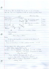 Membrane Potential Notes 2