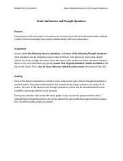 S20 Exercise and Thought Questions.docx