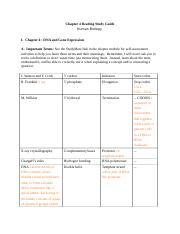 Biology study guide chapter 4