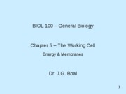 ch 05_Lectures_PPT - jgb