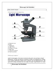 Microscope Lab Worksheet_Vazquez