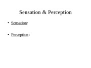 4 - Sensation & Perception