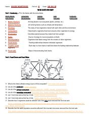Angelica Martinez Huerta Who Eats Whom Ecology Worksheet Name Angie Martinez Period 6 Date Who Eats Whom Part 1 Vocabulary U2013 Fill In The Blanks Course Hero