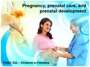 Pregnancy, prenatal care, and prenatal development BB Sp 12-1