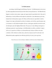 Cell Differentiation.docx