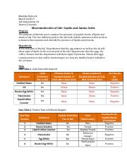 Macromolecules Lab Report