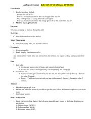 Flame Test Lab Report Format .docx