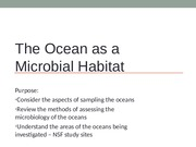 6 BB Microbiology of the Ocean (1)