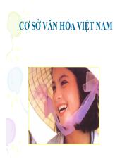 bg_co_so_van_hoa_viet_nam