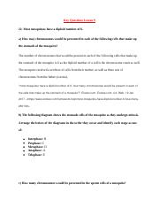Karyotype Analysis answer sheet worksheet.docx - Name Date ...
