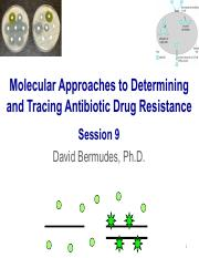 8. Molecular Approaches to Fungal Antibiotic Drug Resistance.3.9.17.pdf
