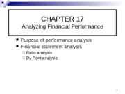 Ch.17_Financial Ratios