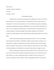 Critical Reflection Essay.docx