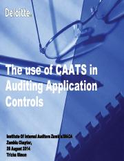 using-caats-in-auditing-application-controls.pdf