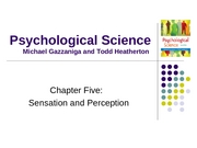 Ch05 Sensation and Perception