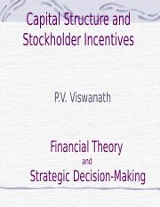 capitalstruc_stockholder_incentives (1).pptx