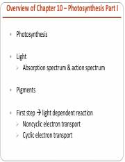 10. Chapter 10 - Photosynthesis Part II.pdf
