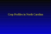 CS 462 crop profiles in North Carolina