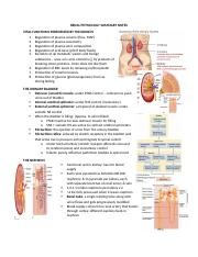 Renal Physiology.docx