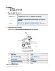 Lab 3- Microscope and the Cell