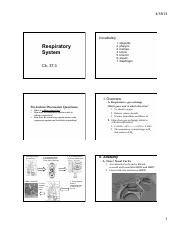Ch_37_3_Respiration_notes_only
