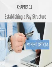 Chapter 11 - Establishing Pay Structure