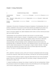 DB 3, Chapter 7 - Energy Metabolism and 4.docx