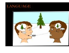 Lecture 21-22 Cognition (Language)