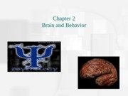 Ch_2_Brain_and_Biology