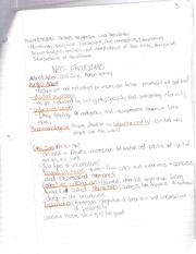 PSYCH 118 -neo-freudian notes