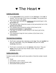 Exam review- Heart.docx
