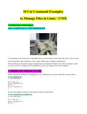 10+13 Cat Command Examples