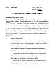rtimm_Carbohydrate Fermentation Lab Report_rtimm
