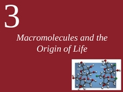 Ch3-Macromolecules and the Origin of Life