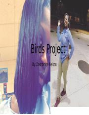 Birds Project.pptx