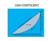 GINI COEFFICIENT.ppt