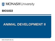 Lect 22 Animal Development (1)