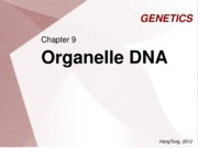 GENETICS chapter 9 - organelle DNA