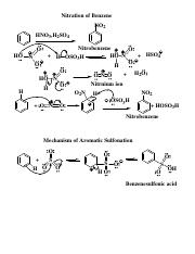 Electrophilic+Aromatic+Substitution_2