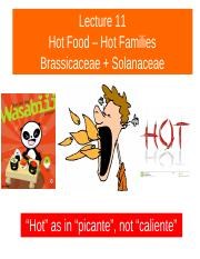 BPSC 021 2017 Lecture 11 Hot Foods Brassic + Solan