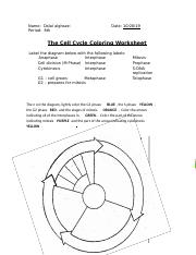 Cell Cycle Coloring Pdf Name Date Period The Cell Cycle Coloring Worksheet Label The Diagram Below With The Following Labels Anaphase Interphase Cell Course Hero