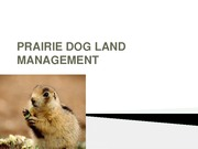PRAIRIE DOG LAND MANAGEMENT (1)