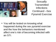 Outline STI-Sex pyramid exercise and other unrelated concepts.