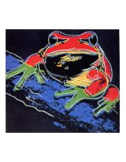 Andy-Warhol-Tree-Frog-294.jpg
