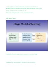 MemoryNotes (Ch.6) Psych1101.docx