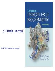 CHEM 403 Chap 5 - Protein FunctionBB.ppt