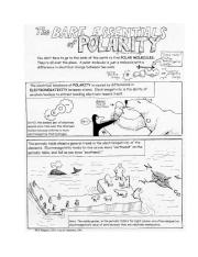 Polar Bears Polarity Comic and Questions.pdf