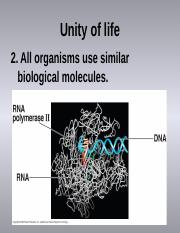 Lecture #3 Biological molecules
