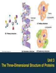Unit-3-The-Three-Dimensional-Structure-of-Proteins.pdf