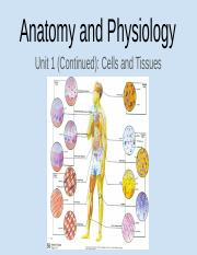 Anatomy & Physiology Unit 1 Part 2-1